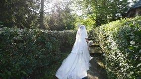 La novia va a lo largo de la trayectoria entre los arbustos almacen de metraje de vídeo
