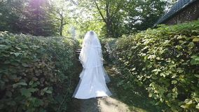 La novia va a lo largo de la trayectoria entre los arbustos metrajes