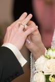 La novia viste al novio un anillo Imagen de archivo libre de regalías