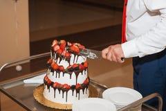 La novia y el novio bastante jovenes elegantes cortaron el pastel de bodas Fotos de archivo