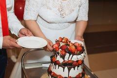 La novia y el novio bastante jovenes elegantes cortaron el pastel de bodas Imagen de archivo libre de regalías
