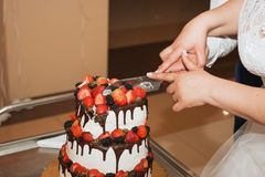 La novia y el novio bastante jovenes elegantes cortaron el pastel de bodas Foto de archivo