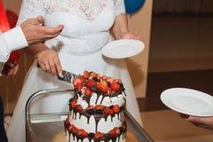 La novia y el novio bastante jovenes elegantes cortaron el pastel de bodas Imagen de archivo