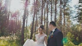 La novia y el novio caminan en un bosque del pino, llevando a cabo las manos y mirando uno a en el sol Beso feliz junto almacen de video
