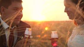 La novia y el novio están bebiendo los vidrios del champán, se están sentando en hierba en la puesta del sol y están sonriendo en almacen de video