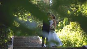 La novia y el novio están caminando a lo largo del callejón del parque almacen de metraje de vídeo