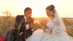 La novia y el novio están golpeando los vidrios del champán, se están sentando en hierba en la puesta del sol y están sonriendo e almacen de metraje de vídeo