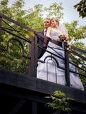 La novia y el novio están mirando en la distancia Imagen de archivo libre de regalías