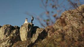 La novia y el novio hermosos felices de los pares de la boda en el día de boda al aire libre en las montañas oscilan almacen de metraje de vídeo