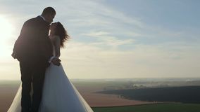La novia y el novio hermosos felices de los pares de la boda en el día de boda al aire libre en las montañas oscilan metrajes