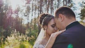 La novia y el novio junto en una danza entre los árboles de pino en el bosque en el sol Día de boda Momentos de felicidad almacen de metraje de vídeo