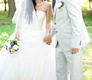 La novia y el novio que llevan a cabo las manos Fotos de archivo libres de regalías