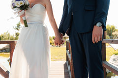 La novia y el novio se divierten durante el día Imágenes de archivo libres de regalías