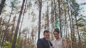 La novia y el novio son juntos en un bosque del pino que lanzan las hojas para arriba en los rayos del sol Momento feliz de almacen de video