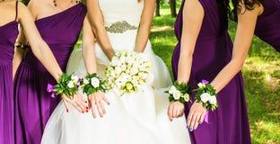 La novia y las damas de honor son el mostrar hermoso Imagen de archivo libre de regalías