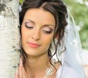 La novia y un abedul Imagenes de archivo