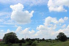 La nube parece un pato Imágenes de archivo libres de regalías