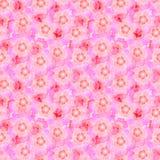 La nube rosada Modelo inconsútil hermoso con las flores libre illustration