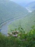 La nueva garganta del río Foto de archivo