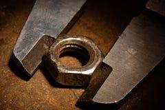 La nuez es medida por una herramienta fotografía de archivo libre de regalías