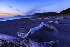 La nuit tombe sur le bois de flottage encombrant une plage perdue de côte en Californie images stock
