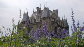 La nuova costruzione ha stilizzato come il castello medievale, il giorno, l'estate, letto di fiore con i fiori blu video d archivio