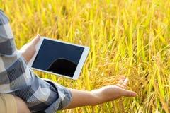 La nuova generazione di agricoltori sta usando la compressa della ricerca e la s fotografia stock libera da diritti
