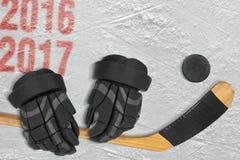 La nuova stagione di hockey 2016-2017 anni Fotografie Stock