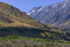 LA NUOVA ZELANDA 16 APRILE 2014; Isola del sud di vista superiore, Nuova Zelanda Fotografie Stock