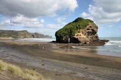 La Nuova Zelanda - isola del nord fotografia stock libera da diritti