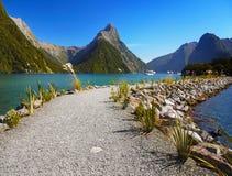 La Nuova Zelanda, Milford Sound Immagine Stock