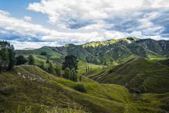 La Nuova Zelanda, strada principale dimenticata Fotografia Stock Libera da Diritti