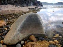 La Nuova Zelanda: Te Karo Bay, Coromandel Fotografie Stock