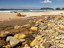 La Nuova Zelanda: Te Karo Bay, Coromandel Immagine Stock Libera da Diritti