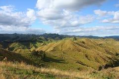 La Nuova Zelanda verde Immagini Stock Libere da Diritti