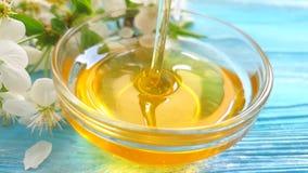 La nutrizione deliziosa del miele della ciliegia dell'estate fresca del dessert sboccia movimento lento di gocciolamento video d archivio