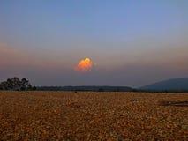La nuvola dorata Immagine Stock Libera da Diritti