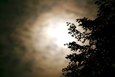 La nuvola ha coperto la luna alla notte Fotografie Stock Libere da Diritti