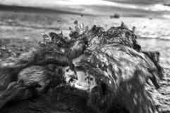 La ola oceánica golpea la bola de cristal en cierre blanco y negro de la playa para arriba imagen de archivo libre de regalías
