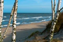 La onda del mar, tormenta en el mar, árboles de abedul por el mar, agita el lapping en la orilla, buque de carga en el mar Imagenes de archivo
