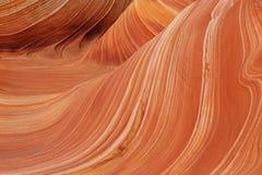 La onda, motas del coyote en los acantilados bermellones fotos de archivo libres de regalías