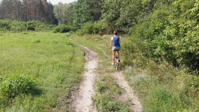La opinión aérea sobre la muchacha está montando una bici retra en un camino de tierra en un campo cerca del bosque metrajes