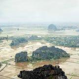 La opinión asombrosa del panorama del arroz coloca, Ninh Binh, Vietnam Imagen de archivo
