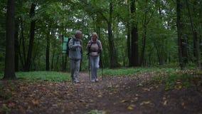 La opinión de ángulo bajo de un positivo agradable envejeció los pares que caminaban en el bosque metrajes