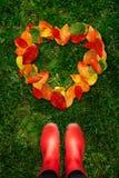 La opinión de alto ángulo la mujer en botas de goma rojas mira abajo en las hojas de otoño de las formas del corazón en hierba ve Fotos de archivo libres de regalías