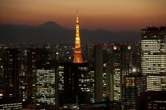 La opinión de la noche de Tokio y de Mt. Fuji Imagen de archivo libre de regalías