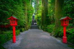 La opinión de la noche del acercamiento a la capilla de Hakone en un bosque del cedro con muchos linterna roja encendida para arr imágenes de archivo libres de regalías