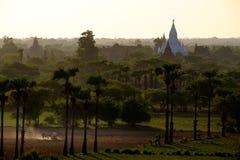 La opinión de la salida del sol del paisaje y de la agricultura coloca con los templos, B Fotografía de archivo libre de regalías