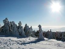 La opinión del invierno de un pico Imagenes de archivo