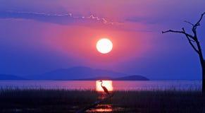 La opinión del paisaje de un sol poniente hermoso sobre el lago Kariba con una silueta de un pájaro en los soles irradia imagen de archivo